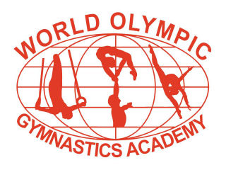 Dr. Sarang Desai   World Olympics Gymnastics Academy